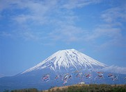 A Carp Streamer And Mt. Fuji