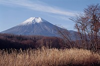 Mt. Fuji