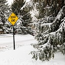 Snowy street scene in suburb with evergreen trees and dead end road sign