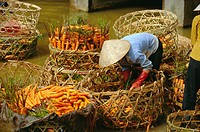 Woman washing carrots, Dalat, Central Highlands, Vietnam, Indochina, Southeast Asia, Asia