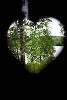 View of trees from heart shape