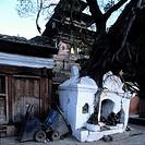 60X60 FOTO: Claes Grundsten COPYRIGHT BILDHUSET, Tree Growing Over Walls Of Temple