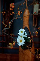 Daisies And Twigs (thumbnail)