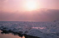 Drift Ice And The Morning Sun