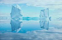 Icebergs Reflected In Water