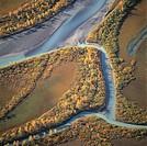 Flygfoto över Laitauredeltat, Lappland. Laitaure Delta, Lappland, Sweden, Aerial View