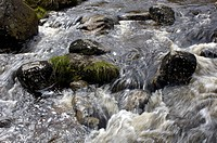River Dart near Whistmans Wood Dartmoor National Park Devon England