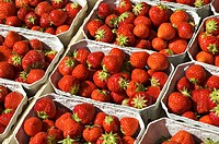 Freshly picked organically-grown strawberries in baskets