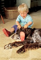 Two-year-old boy with dog Setter MR