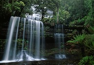 RUSSELL FALLS in temperate rainforest. Mount Field National Park. Tasmania. Australia