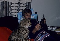 Cheetah Acinonyx jubatus orpan as pet in Kenya household