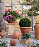 Terracotta flower pots on terrace