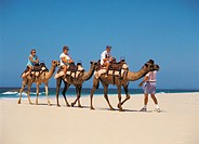 Family enjoying camel ride on beach at Port Macquarie, New South Wales Australia