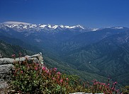 View to the North (Sierra Nevada with Alta Peak 3415 m) from Moro Rock, Sequoia NP, California, USA