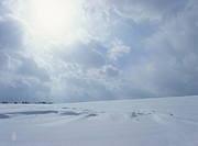 A Snowy Field And The Sun (thumbnail)