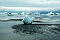 Icebergs in tideland Ikaasaalaq Sermilik Fjord Eastgreenland