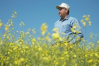 Farmer Standing in Field of Canola