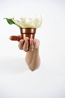 Hand Holding Potted Flower