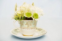 Flowers in teacup