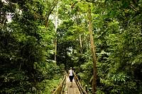 Woman, Forest, Amazônia, Manaus, Amazonas, Brazil