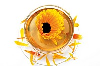 Marigold tea (Calendula officinalis)