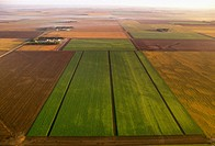 Agriculture _ Aerial, sugar beet fields at different stages of harvest / MN _ Red River Valley