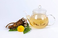 Dandelion tea in glass teapot, dandelion root, flower & leaves