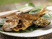Grilled snapper with vegetable salad