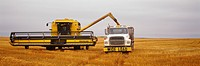 Agriculture _ A New Holland combine unloads harvested wheat into a grain truck during harvesting operations / Central KS