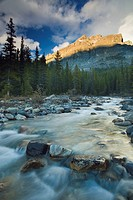 Picturesque scenic of Mosquito Creek, Banff National Park, Alberta, Canada