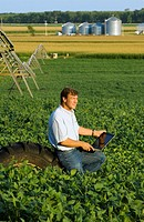 Agriculture _ A farmer enters crop data into his laptop computer while standing in his mid growth soybean field, with a center pivot irrigation system...