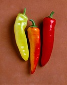 Agriculture _ Hungarian wax peppers on tile, close_up, Volcano variety, studio