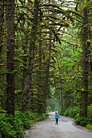 Young girl on the road to Tow Hill, Naikoon Provincial Park, Queen Charlotte Islands, British Columbia, Canada