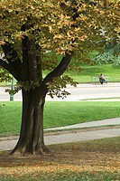 Park scene, person sitting on bench in background