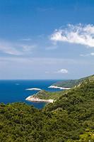 Coastal landscape of Mljet Island, Dubrovnik-Neretva county, Dalmatia, Croatia, Europe