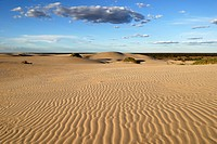 Sand dunes in Mungo National Park, New South Wales, Australia