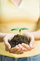 Hispanic woman holding seedling
