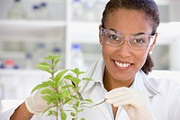 African scientist performing analysis in laboratory on plant