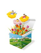 Kids, Box, Flower (thumbnail)