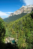 Ordesa canyon , Ordesa and Monte Perdido national park , Huesca province , Aragon , Spain