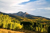 Aspen groves full of autumn color stand below high peaks in the La Sal mountains near Moab, Utah