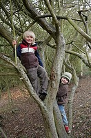 Boys climbing on tree branches