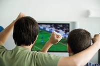 Two males watching sports on television, fists raised in air, rear view