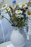 Bunch of Marguerites and corn flowers