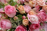 Pink_coloured bunch of roses