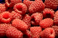 Raspberries (thumbnail)