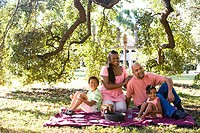 Portrait of African American family having picnic in park