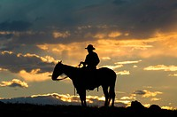 A cowboy and a horse at twilight.