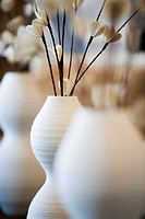 Row of Flowers in White Vases