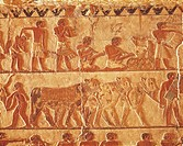 Egypt, Cairo, Ancient Memphis, Saqqara, farming themes relief at tomb of Nefer and Ka Hay